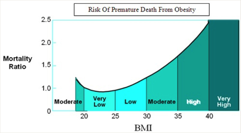 chart showing Obesity Health Threats